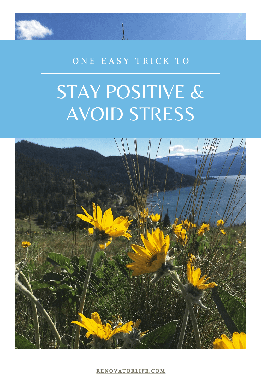 Stay Positive and Avoid Stress